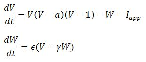 FitzHugh Nagumo Equations