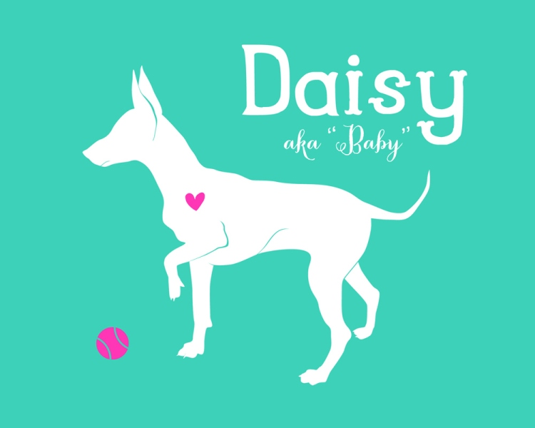 "Daisy aka ""Baby"" by Jessica Turnbow"
